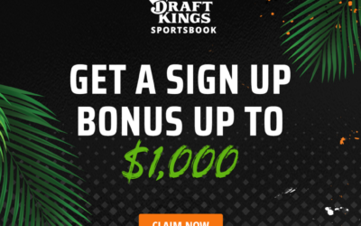 How to Bet on the Super Bowl – The complete idiots guide to betting online.